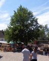 Stadtfest_2016_5